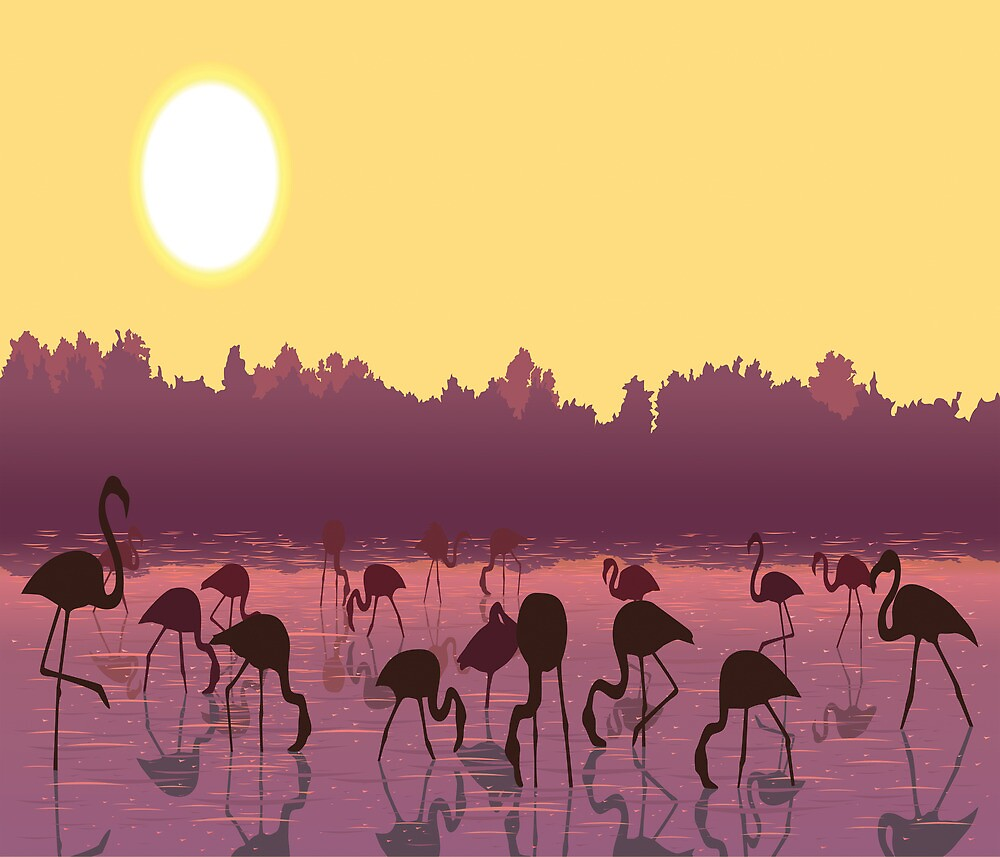 Dance of The Flamingos by rcurtiss000
