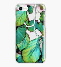 Leaves 11 iPhone Case/Skin