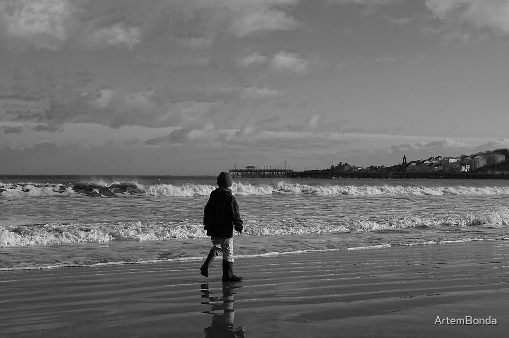 Winter walks along the beach by ArtemBonda
