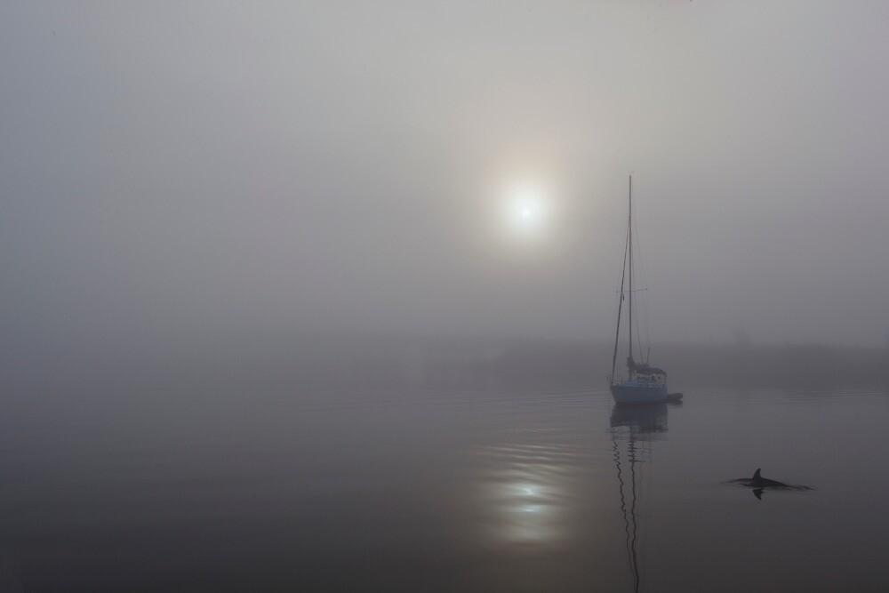 Quite morning by John Sluder