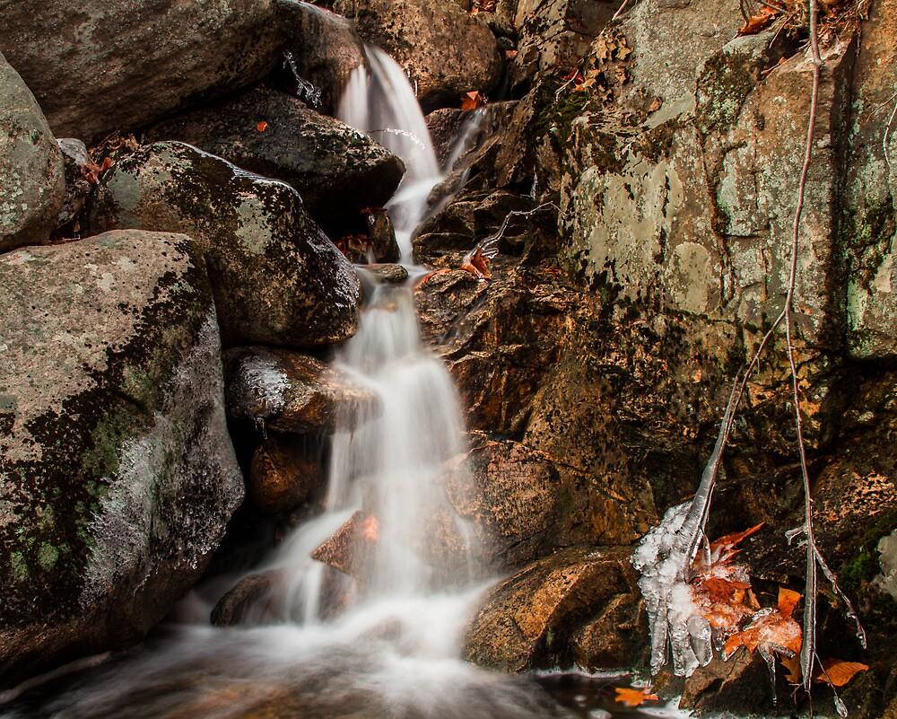 Amber Falls  by David Gallo