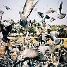 Flight of fright by UniSoul