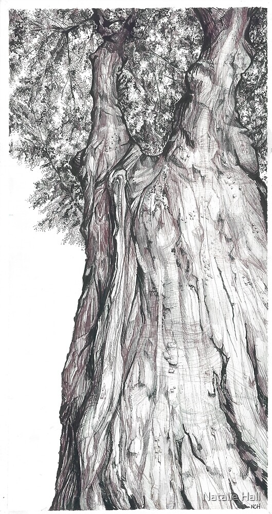Tree Pattern by Natalie Hall