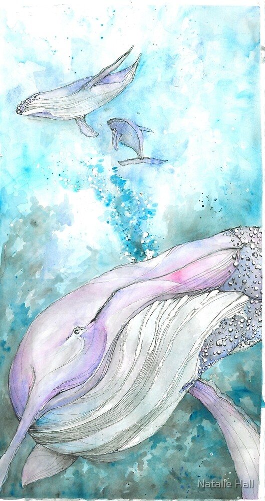 Watercolor Whales by Natalie Hall