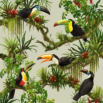 Toucans and bromeliads - canvas background by ikerpazstudio