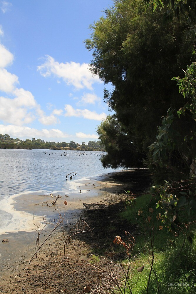 Local lake Wannaroo by cocowes