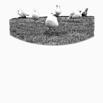 Bird Mob by ilantia
