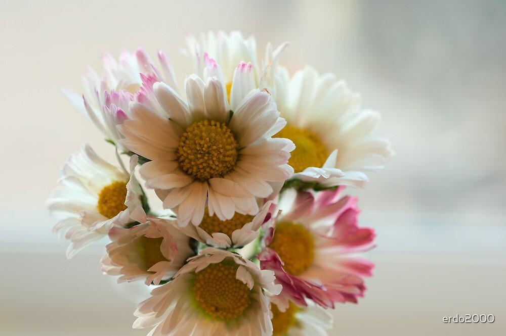 Delicate Bouquet by erdo2000