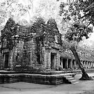 Ta Prohm Temple in Siam Reap by DebWinfield