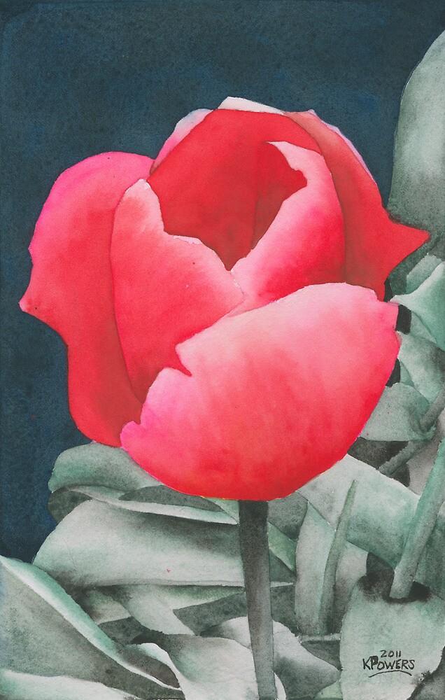 Single Tulip by Ken Powers