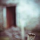 Door - Kerry by Mark  Bennett
