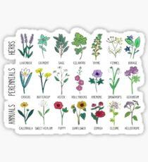 plants, herbs, & Co Sticker
