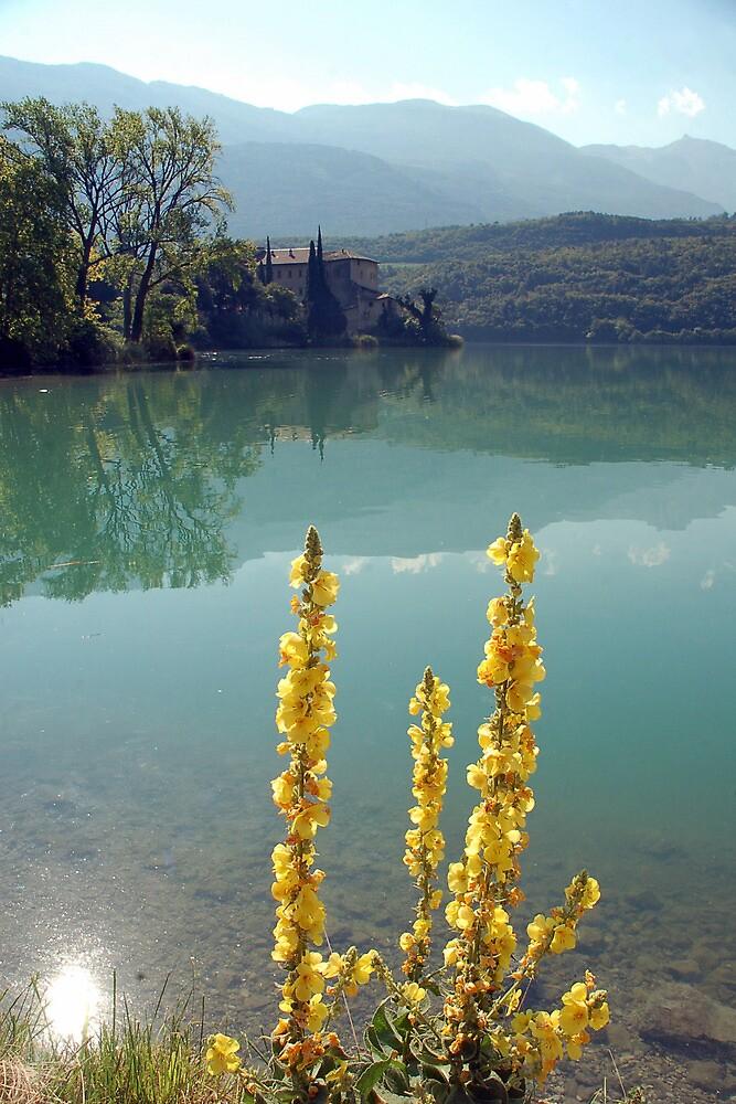 Lago di Cavedine - Italy by Arie Koene