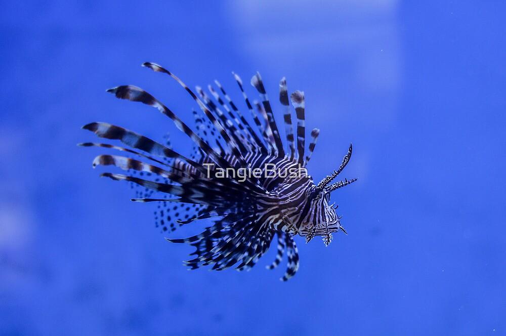 Lionfish by TangieBush