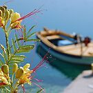 Flower and boat by Arie Koene