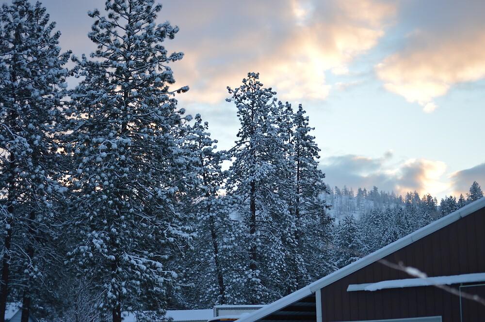 Sunrise on the snow by tbaslington