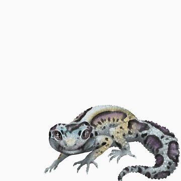 Snow Bandit Leopard Gecko by knon