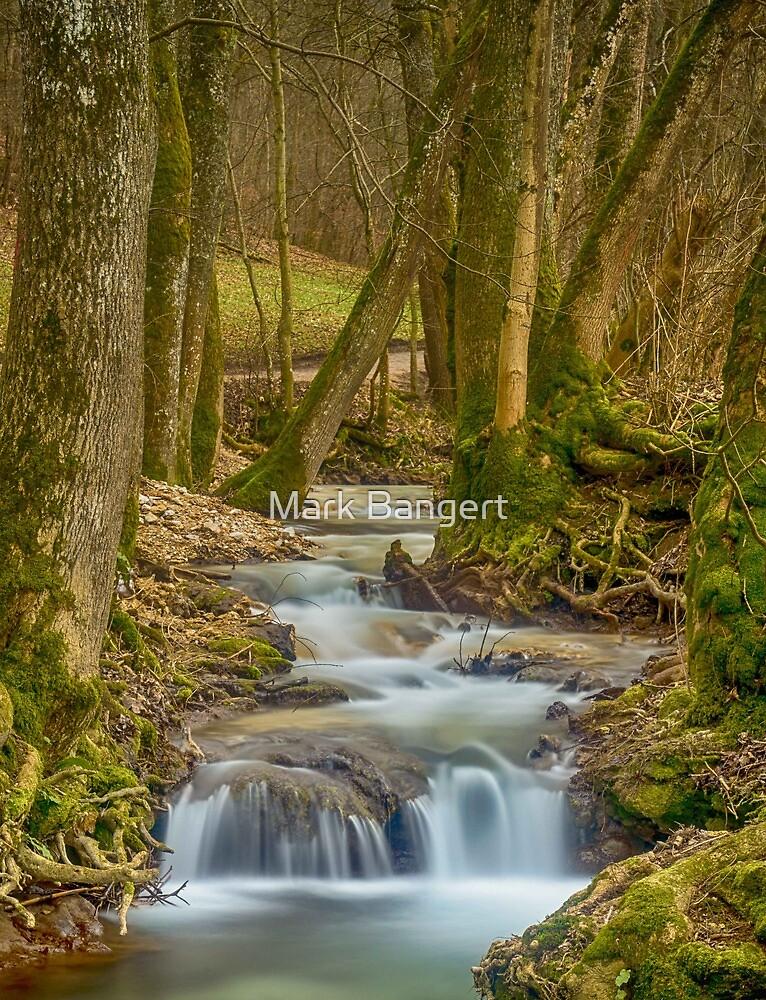 Bad Urach Waterfall, Southern Germany by Mark Bangert