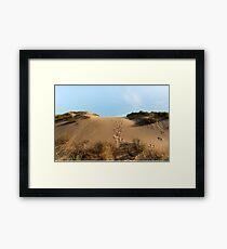 Chasing Kangaroos Framed Print