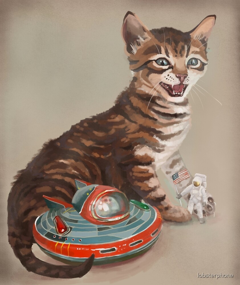 Kitten and UFO by lobsterphone