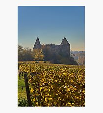 Burkheim, Kaiserstuhl - the castle Photographic Print