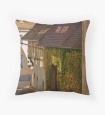 Burkheim, Kaiserstuhl - sunlight detail on vines Throw Pillow