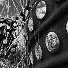 Scrap Metal by Jono Hewitt