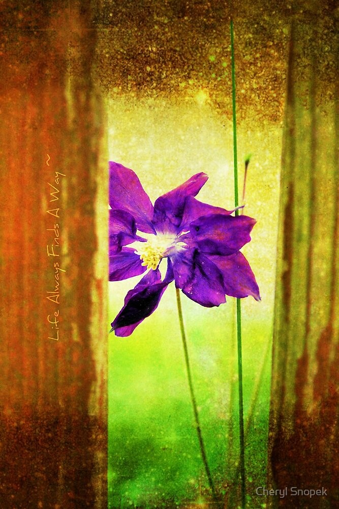 Life Always Finds a Way by Cheryl Snopek