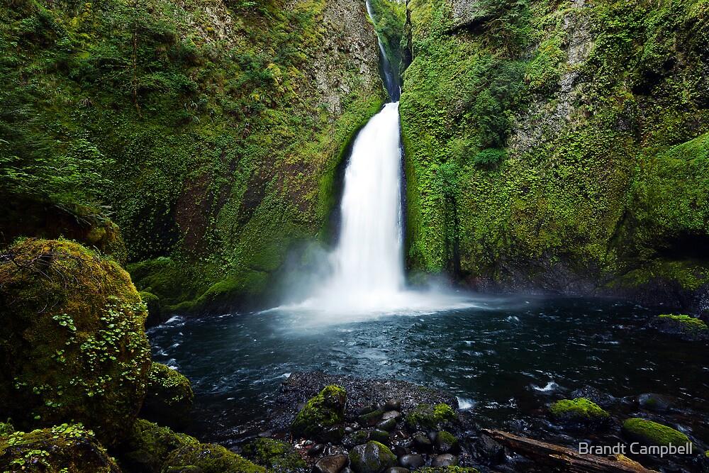 Wahclella Falls by Brandt Campbell