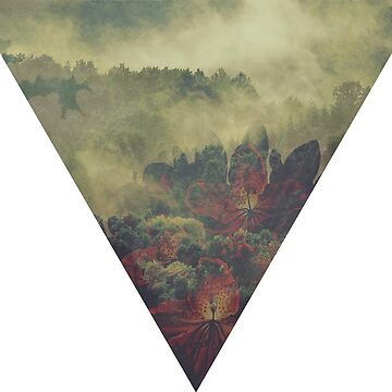 Pyramid of flora by absolutewhite