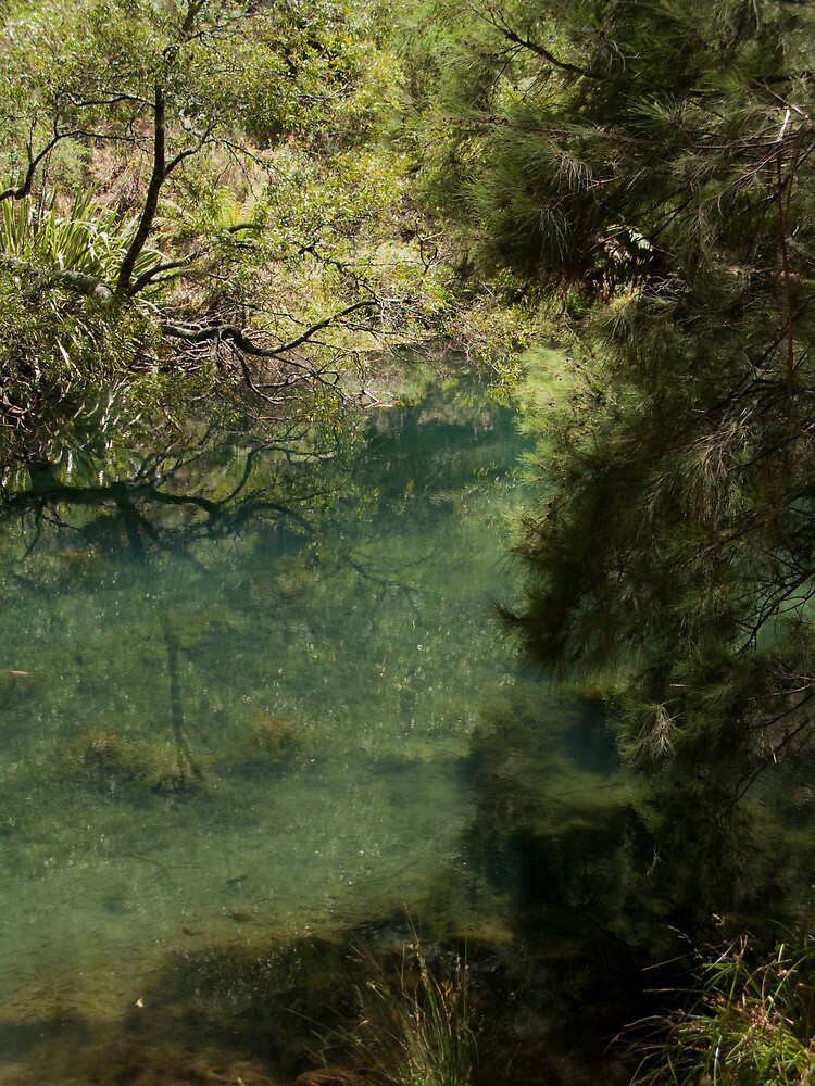Lake at Jenolan by alexettinger