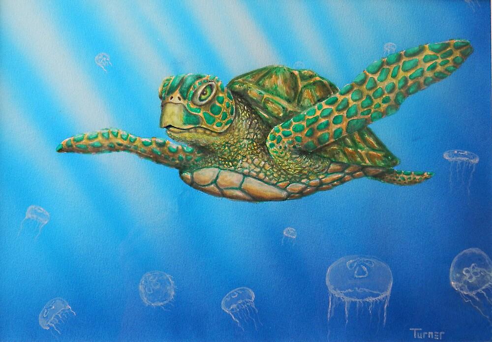 Sea Turtle by StephenLTurner