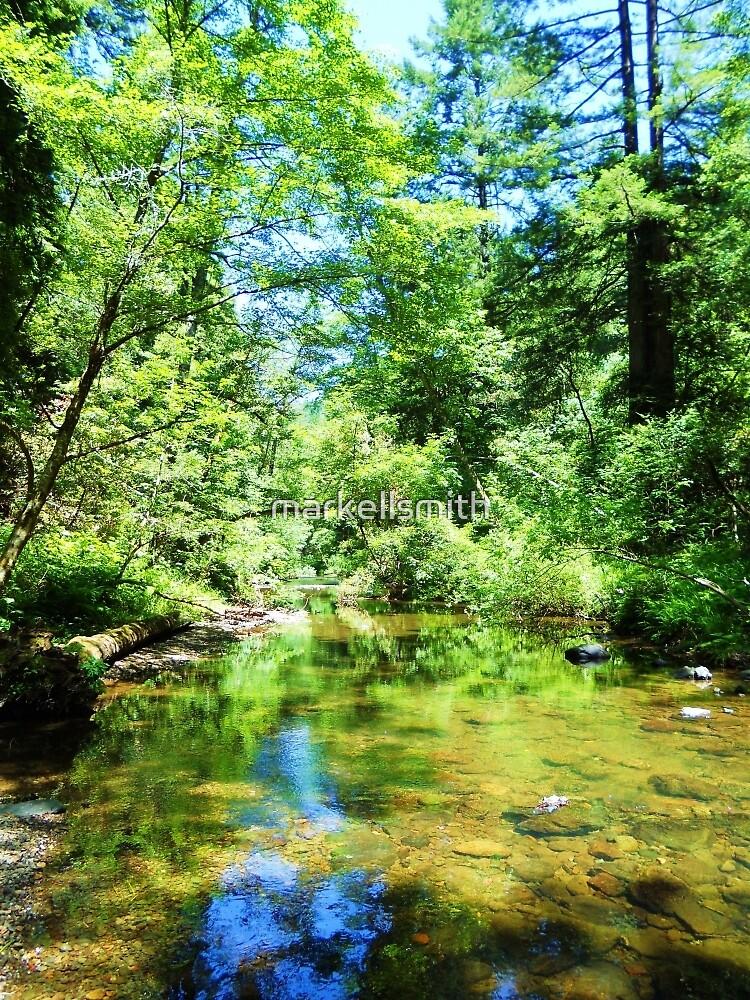 Bear Valley Creek by markellsmith