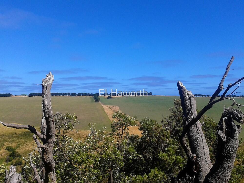 Landscape - Cape Schanck, Victoria, Australia by ELHaworth