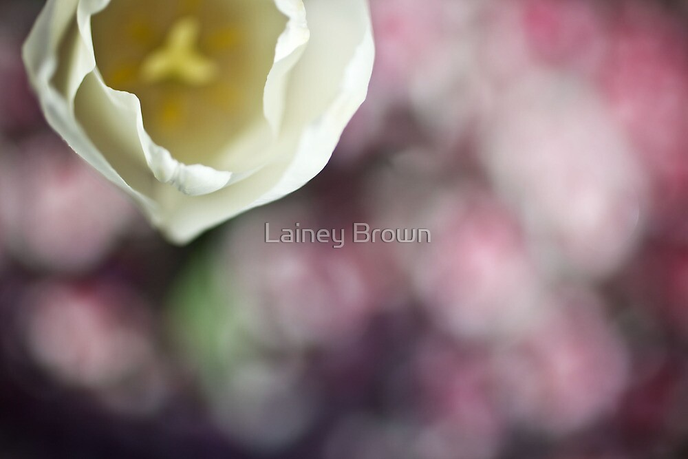 Pretty little flower by Lainey Brown