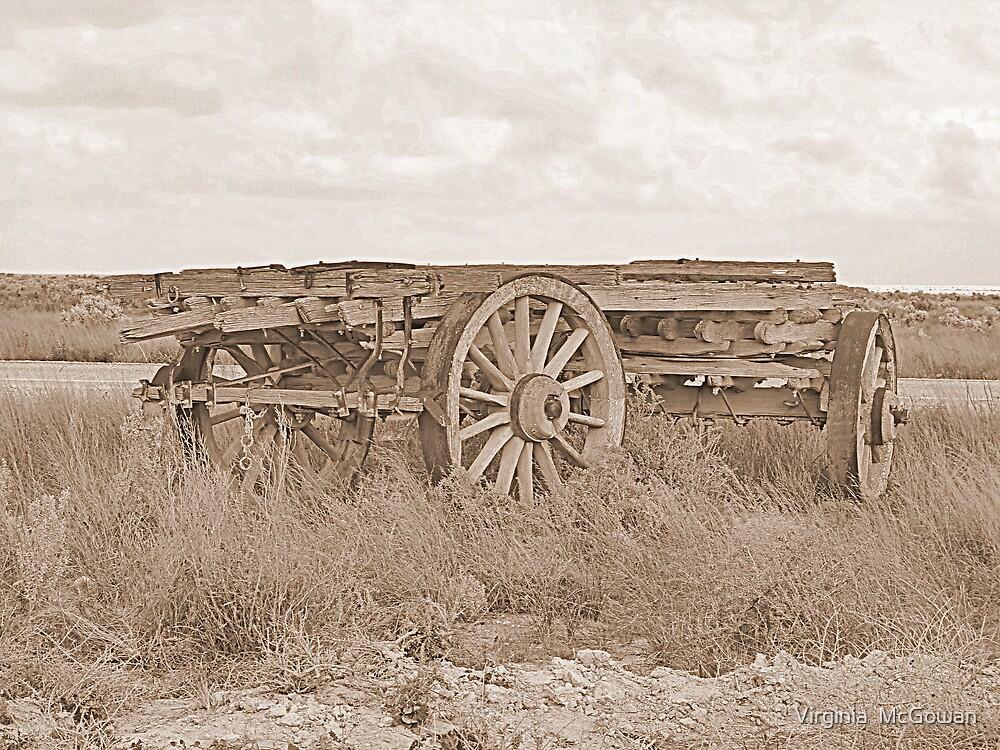 Timber Wagon Nullarbor # 2 by Virginia  McGowan