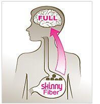 skinny fiber by skinnyfiber5567