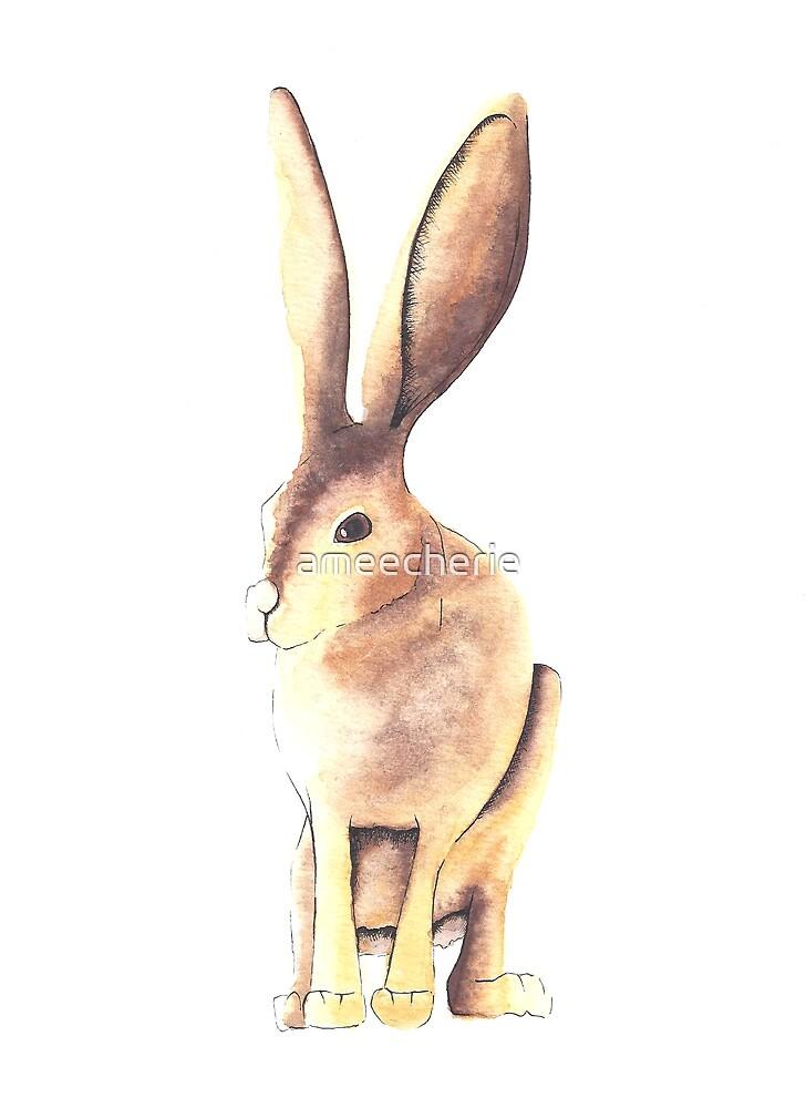 Peter Rabbit by ameecherie
