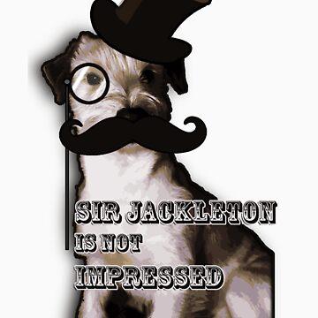 Sir Jackleton! by SabbaProd