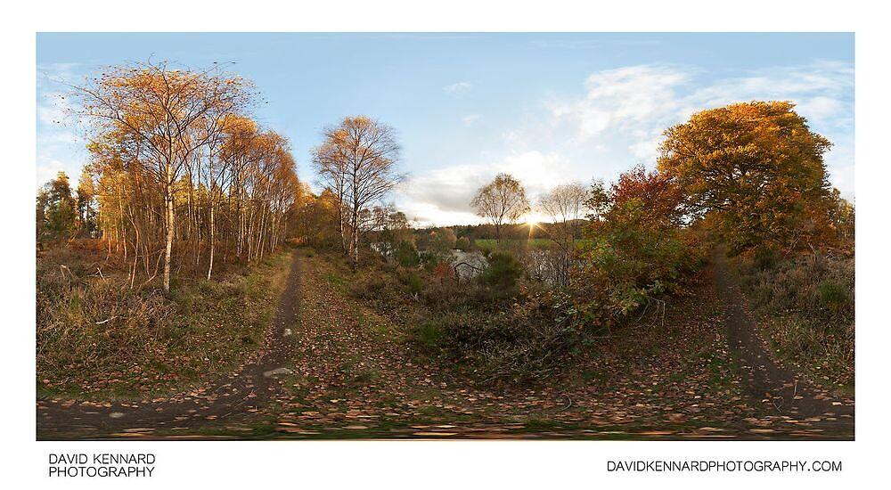Autumn trees by the River Beauly, Kilmorack by DavidKennard