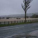 editorial shot of river axe floods feb 2014 by brucemlong