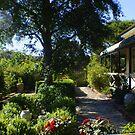 my cottage garden by BronReid