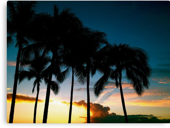 Tropical Sunset by Ernie Lopez