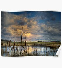 The Big Glow ~ Finley Refuge ~ Poster