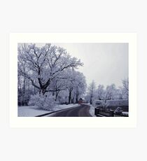 The beautiful side of winter Art Print