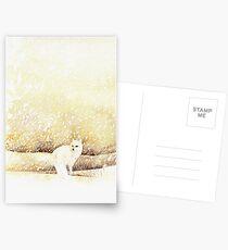 Arctic Fox in the Snow Postcards