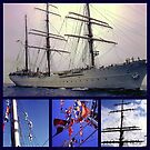 America's tall ship, The Eagle (collage) by Nancy Richard