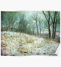 Trees Sky and Snow Fence   Poster