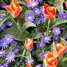 Purple and orange by Arie Koene