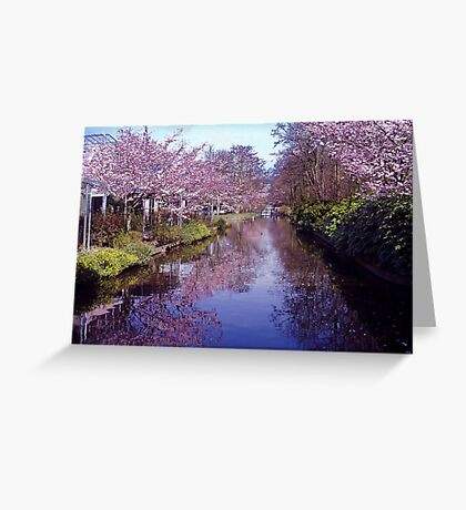 Blossoms in the Keukenhof Greeting Card